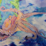 Octopus illustration by Terese Newman